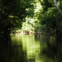Peru plant touristischen Rundkurs durch Amazonas-Region