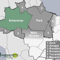 Bundesstaat Amazonas