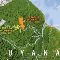 Guyana verkauft Gold-Schürfrechte für 1 Mrd. US-Dollar