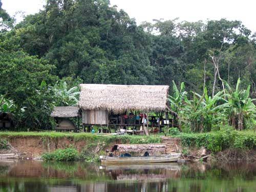 Indigene v lker kolumbiens stehen vor der ausrottung for Jardin kolumbien