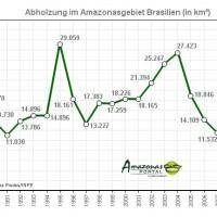 Brasilien bescheinigt Amazonas niedrigste Abholzungsrate in 24 Jahren