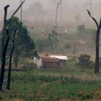 Packende Umwelt-Doku: Droht dem Amazonas der Kahlschlag?