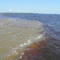 Lebensspendende Weißwasserflüsse