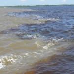 Drei Flussarten in Amazonien