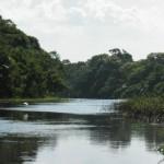 Angelparadies Amazonien