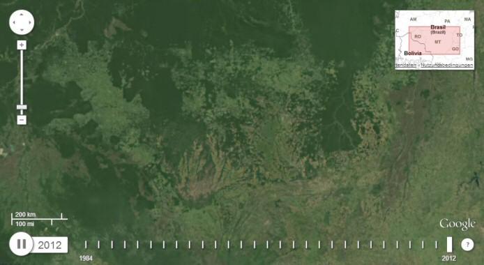 abholzung-2012