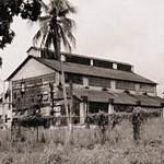 Fordlãndia – verrottet im Regenwald