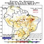 Tausende Brandherde im Amazonas-Regenwald bereiten Experten Sorgen