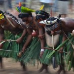 Amazonien – 1/2 Jahrhundert später