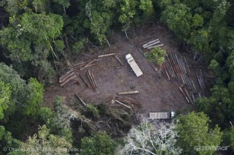 Illegal Logging in Para State, Brazil