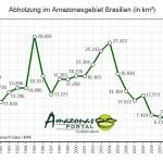 Abholzung im Amazonasgebiet erneut leicht gesunken
