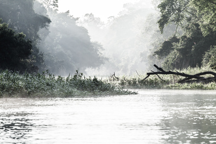 Amazon river in morning ( HDR image )