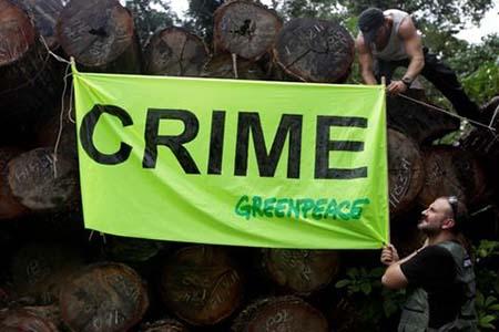 Divulgacao Greenpeace