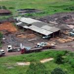 Polizei zerstört Sägereien im Umfeld von Indio-Territorien