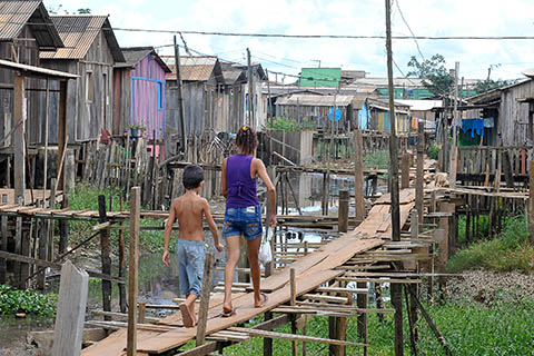 Flussbewohner - Foto: Archiv Agencia Brasil