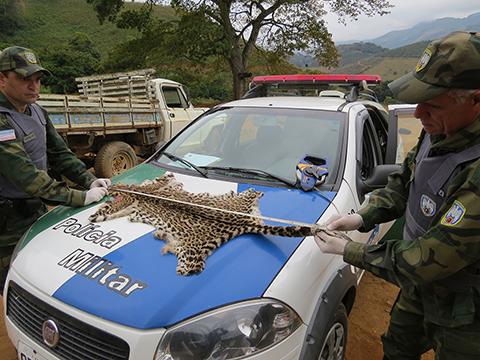 Foto: Policia Militar Ambiental