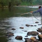 Gesündeste Herzen der Welt schlagen im Amazonas-Regenwald