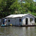 Die wichtigsten gesellschaftlichen Probleme im Amazonas