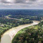 Amazonas-Savannen – Die großen Unbekannten