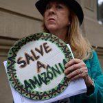 Brasiliens Regierung setzt Regenwald in Gefahr