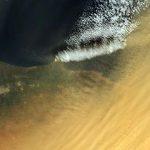 Sahara für Regen und Düngung des Amazonas-Regenwaldes verantwortlich