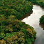 """Mercosul soll """"fliegende Flüsse"""" Amazoniens schützen"""