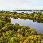 Dreidimensionale Laserbilder des Amazonas-Regenwaldes im Einsatz für Klima-Schutz