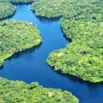 Tag Amazoniens: Nachhaltige Entwicklung im Amazonas-Regenwald ein Muß