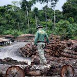 WWF-Studie belegt 5.675 Prozesse für Mineralabbau in Schutzgebieten und Indio-Territorien Amazoniens