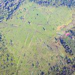 Brasilien räumt Geoglyphen Amazoniens hohe Bedeutung ein