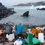 Plastikpartikel auch in Amazoniens Fischen nachgewiesen