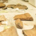 Brasilien: Forscher entdecken 3.000 Jahre alte Siedlungsnachweise