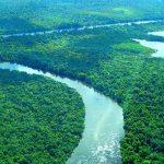 Amazonien verliert jährlich 350 Quadratkilometer Wasserfläche