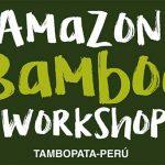 Peru: Mit Bambus den Amazonas-Regenwald retten