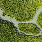 Bedrohung der Amazonasflüsse durch Wasserkraftwerke in Anden Perus und Boliviens