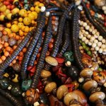 Indios und Flussanlieger des Amazonas-Regenwaldes bieten Kunsthandwerk im Internet an