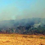 Schleppende Brandbekämpfung in Boliviens und Brasiliens Regenwald