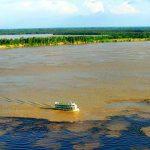 Zum Tag Amazoniens gründen Organisationen einen Fonds zum Schutz des Regenwaldes