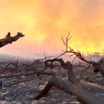 Brasilianisches Amazonien: Militäreinsatz verringert drastisch Zahl neuer Brandherde, nicht aber Rodungen