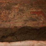 Studie belegt Berichte aus dem 16. Jahrhundert über starke Besiedlung Amazoniens