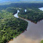 Klimagipfel COP25: Deutschland, Norwegen und Großbritannien finanzieren Regenwaldschutz in Kolumbien