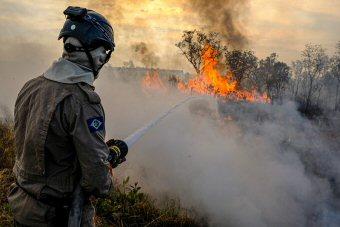 Brasilien Verzeichnet Einen Starken Anstieg Der Lauffeuer  Aktuelles