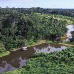 Forum will zum Schutz des Regenwaldes nachhaltige Nutzung Amazoniens fördern