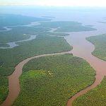 Unesco und Luxusartikelunternehmen wollen gemeinsam Herz Amazoniens schützen