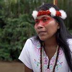 Brief aus Amazonien…